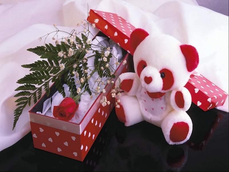 Самый красивый подарок 1